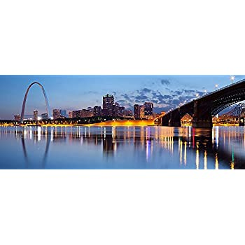 St. Louis Skyline Wall Mural -- Self-Adhesive Wallpaper - Multiple Sizes -
