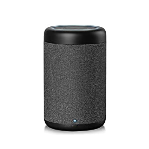 GGMM D6 Portable Speaker for Amazon Echo Dot 2nd Generation, 20W Powerful Stereo Speaker, 5200mAh Battery Powered True 360 Speaker with 20H Playing Time for Bedroom, Kitchen, Living Room