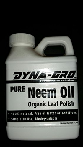NEEM OIL ORGANIC, (concentrate), excellent organic pesticide, fungicide- made from natural neem tree seeds.great for vegetable gardening, fruit gardening and ORGANIC GARDENING(Hydrangeas Shrub, Evergreens, Gardenia