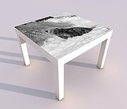 Design Tisch mit UV Druck 55x55cm schwarz wei/ß B/är Grizzly Braun Alaska Grizzlyb/är Spieltisch Lack Tische Bild Bilder Kinderzimmer M/öbel 18A474 Tisch 1:55x55cm