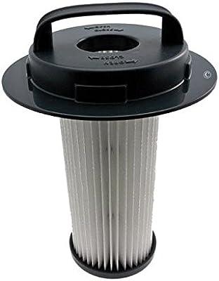 Philips - Filtro de aire HEPA cilíndrico para aspiradores Philips FC9201, FC9202, FC9204, FC9206, FC9209 y FC8048: Amazon.es: Hogar