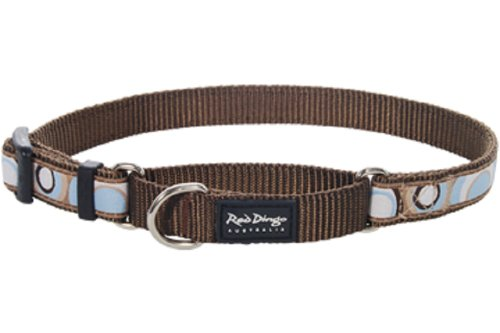 Red Dingo Designer Martingale Dog Collar, Large, Circadelic - Brown Collar Dog Martingale