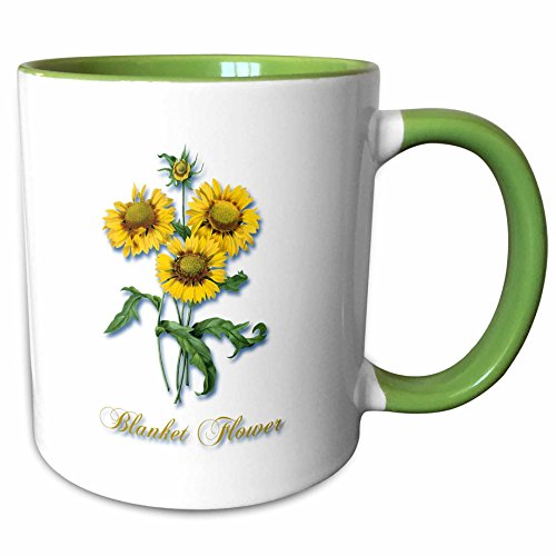 - 3dRose BLN Flowers and Fruits by Pierre Joseph Redoute - Blanket Flower, Botanical Print of Bright Yellow Flowers - 15oz Two-Tone Green Mug (mug_171168_12)