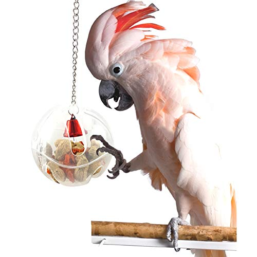 Bird Toys - Osister7 Bird Seed Food Aging Toy Cage Feeder Chain Birds Parrot Budgie Parakeet Cockatiel - Basketball Eclectus Cage Clearance Chain Cockatiels Dollar Pinata Medium Swing Conure