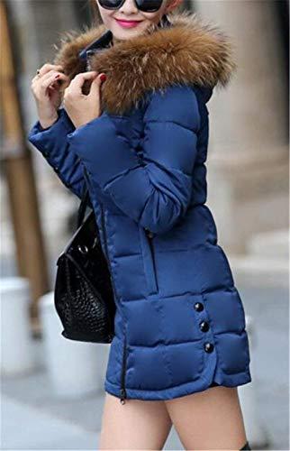 Bolsillos Cuello Otoño Acolchada Laterales Piel Chaqueta Mujer Parkas Encapuchado Ropa Elegantes Invierno De Acolchado Sintética Blau Con Outerwear Manga Larga Cremallera Plumas Moda Abrigo AaxfWnFxw