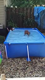 Bestway rectangular splash frame pool 94 59 for Bestway pool for koi