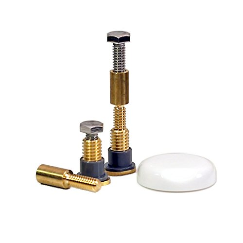 - NEXT BY DANCO Zero-Cut Bolts Toilet Mounting Bolts, Brass, 2-Pack (10770)