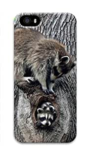 Baby Raccoon 018 Iphone 5 5S Hard Protective 3D Cover Case by Lilyshouse by icecream design