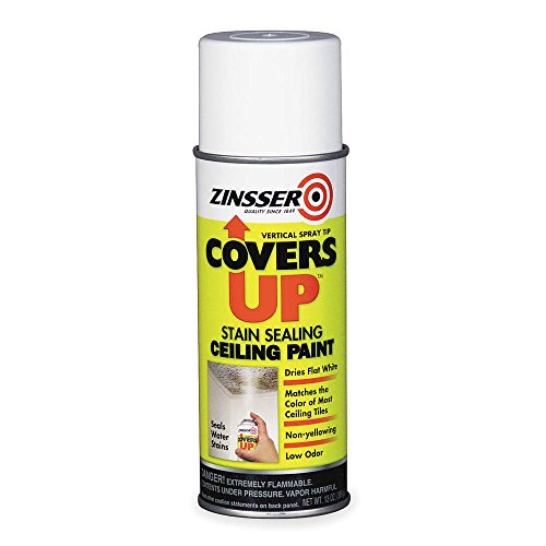 Zinsser Ceiling Sealing Paint, 13 Oz, White