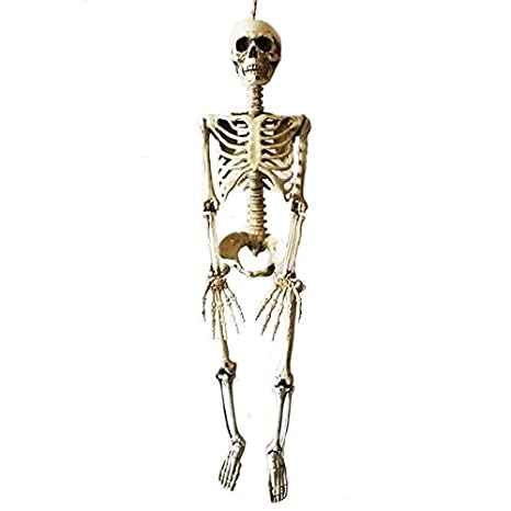 9c4483af6f 36inch 90cm Halloween Skeleton 100% Plastic Children Size Skeleton for  Halloween Decorations