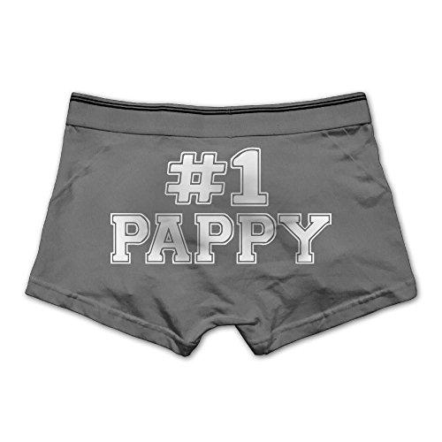 Zhikiss 1 Pappy Mens Stretchable Boxer Briefs Large Ash - Van Pappy