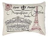 Elysee Stencil Paris Pillow 14x18