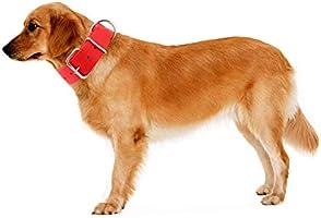 Yunleparks Collar de Perro Resistente de Nailon Grueso y Duradero ...