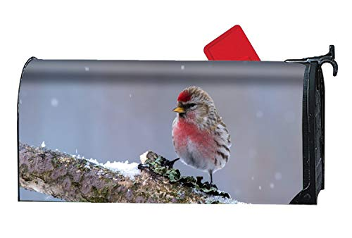 Taocaihop Animal Finch Birds Magnetic Mailbox Cover - 9