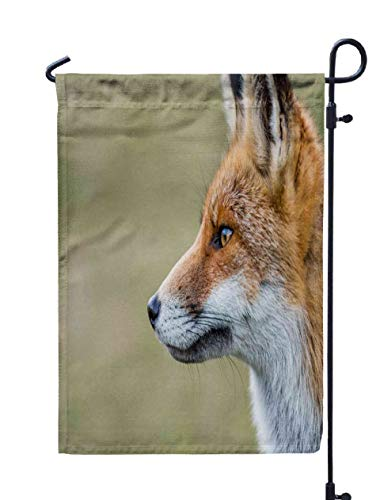Shorping Welcome Garden Flag, 12x18Inch Fox for Holiday