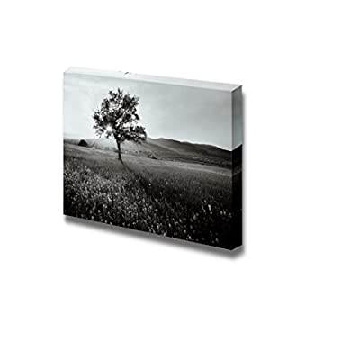 Canvas Prints Wall Art - Black and White Landscape of a Field of Wild Flowers | Modern Wall Decor/Home Decoration Stretched Gallery Canvas Wrap Giclee Print & Ready to Hang - 32