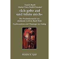 »Ich gebe auf und tröste mich«: Die Psychodynamik von sinnlosem Leid im Buch Hiob. Psychoanalyse und Theologie im Dialog