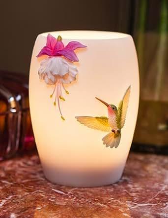 Ibis Amp Orchild Fuchsia Amp Hummingbird Night Lamp Night
