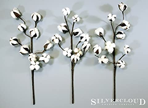 Cotton Stems - 3 Stems/Pack - 10 Cotton Buds/Stem - 20