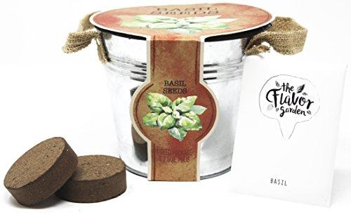 Italian Planter - Italian Herb Garden Planters, Basil (Seeds with Soil Pods)
