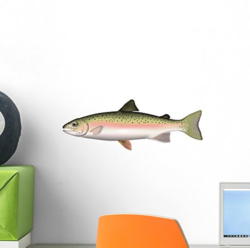 Wall Decal by Wallmonkeys Peel and Stick Graphic (12 in W x 4 in H) WM119654 Salmon Fish Wall