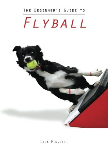 The Beginner's Guide to Flyball
