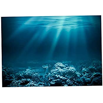 DYNWAVE Single-Sided Adhesive Aquarium Background Backdrop Fish Tank Reptile Terrarium Vivarium Wallpaper Decor - Undersea World - L