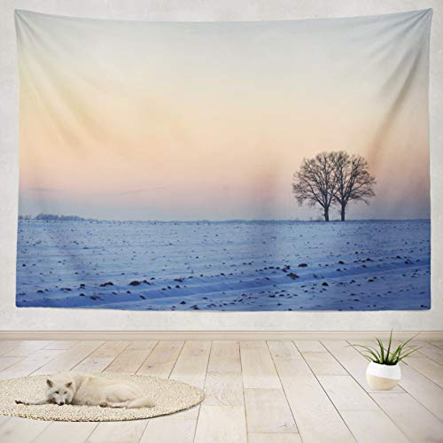 Tapestry Wall Handing Winter Sunset Landscape Art Beautiful Beauty Nature Blue Weather Colors Wall Tapestry for Bedroom Living Room Tablecloth Dorm 80WX60L Inches