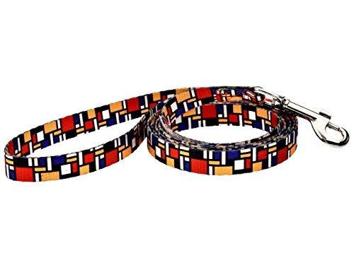 DoggyRide Fashion Dog Leash, 5-Feet by 5/8-Inch Small Hook, Mondrian, Multi