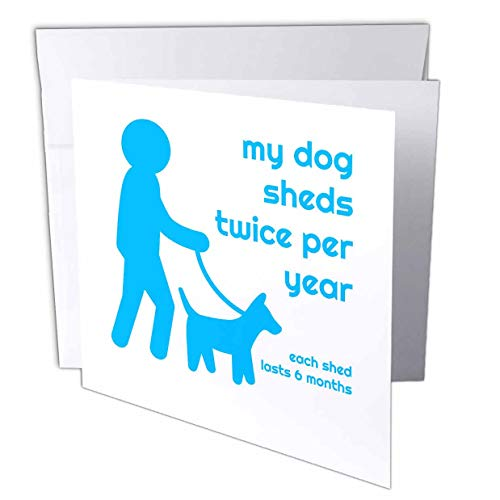 - 3dRose Carrie Merchant 3drose Quote - Image of My Dog Sheds Twice Per Year Each Shed Lasts 6 Months - 1 Greeting Card with Envelope (gc_307125_5)