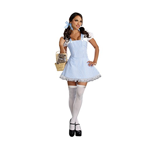 Dorothy Sexy Adult Costumes (Dreamgirl Gingham Dress, Light Blue, Small)
