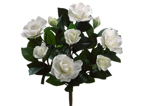 17-Gardenia-Bush-x9-w7-Flw-2-Buds-72-Lvs-Cream-White-Pack-of-6