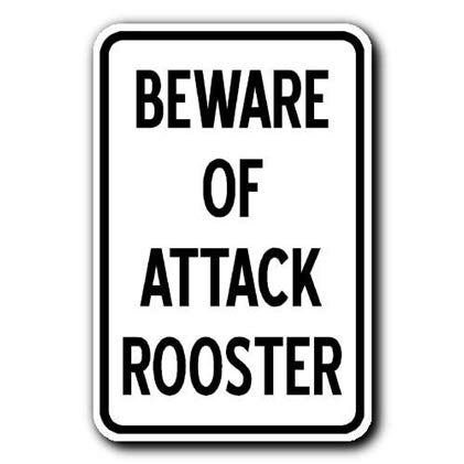 Aluminum Metal Sign Funny Beware of Attack Rooster Informative Novelty Wall Art Vertical ()