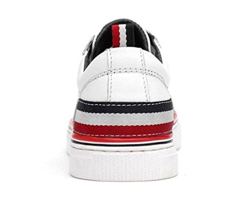 Canvas Estudiantes universitarios antideslizantes Soft Soles Casual Breathable Low Top zapatillas Wareable Lace-up Gym blanco clásico zapatos negro UE tamaño 37-45 White