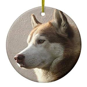 Mars Secret Alaskan Malamute Dog Ceramic Christmas Ornaments Ceramic Double Sided Christmas Tree Decorations Hanging 3 Inches 1