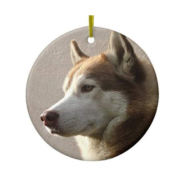 Mars Secret Alaskan Malamute Dog Ceramic Christmas Ornaments Ceramic Double Sided Christmas Tree Decorations Hanging 3 Inches 1