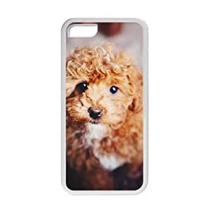 Welcome!Iphone 5C Cases-Brand New Design Cute Teddy Dog Printed High Quality TPU For Iphone 5C 4 Inch -07