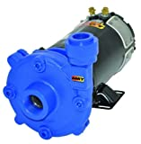 AMT Pump 489G-95 High Head Washdown Pump, Cast Iron, 1 HP, 1-1/4'' NPT Female Suction, 1'' NPT Female Discharge Port