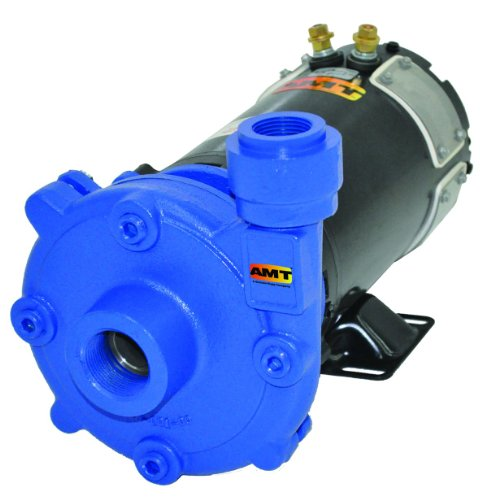 AMT Pump 489G-95 High Head Washdown Pump, Cast Iron, 1 HP, 1-1/4'' NPT Female Suction, 1'' NPT Female Discharge Port by AMT Pumps
