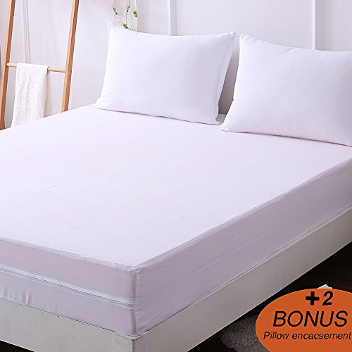 Top 5 Best Bed Bug Mattress Protectors Updated For 2019