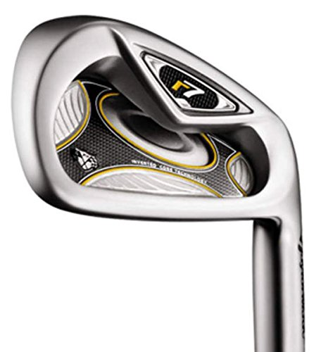 Taylormade R7 Wedges (TaylorMade R7 TP Wedge Sand SW True Temper Dynamic Gold S200 Steel Stiff Right Handed 36 in)