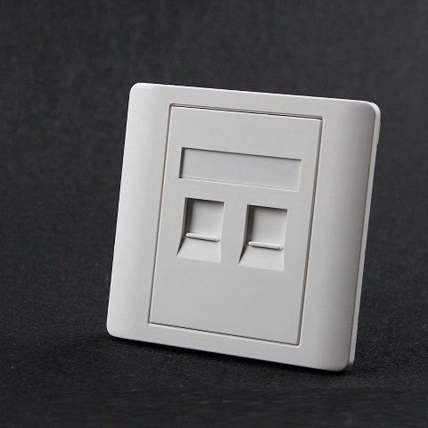 Dual Ports Faceplate 2 ports Faceplate wallplate Face plate wall socket for RJ45 RJ11 phone JACK (Faceplates Dual)