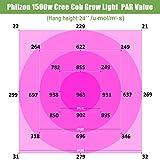Phlizon CREE COB Series 1500W LED Plant Grow