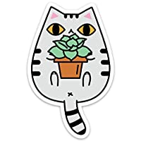Tabby Cat with Succulent Plant Vinyl Sticker
