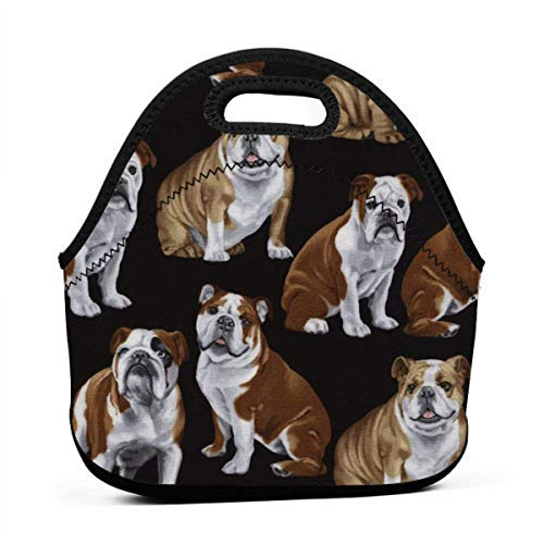 - Lunchbox Food Container Organizer for Adults Kids Nurse Teacher Work Outdoor Travel Picnic, Leakproof Large Capacity Lunch Holder Compact Totebox - English Bulldogs