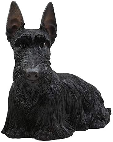 Ebros Adorable Large Lifelike Realistic Black Longhaired Scottish Highlands Terrier Statue with Glass Eyes 14.25 Long Scottie Figurine Pedigree Breed Animal Theme Dogs Puppy Puppies Sculpture