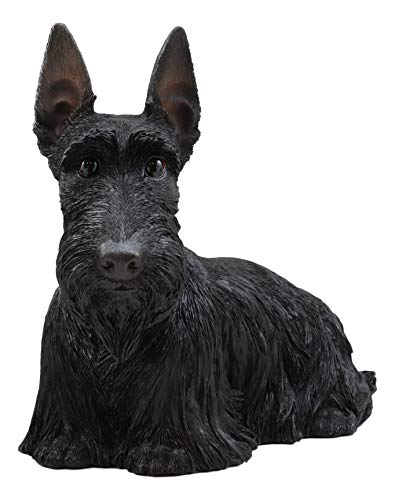 Ebros Adorable Large Lifelike Realistic Black Longhaired Scottish Highlands Terrier Statue with Glass Eyes 14.25