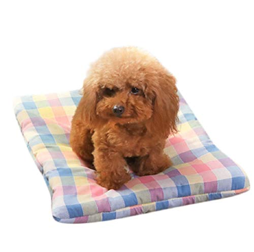 (Barlingrock Small Dog Cat Puppy Bed, Rectangle Shape Self Warming Durable Portable Indoor Soft Warm Comfortable Pet Dog Cat Bed Puppy Cushion House Pet Washable Mat Blanket)