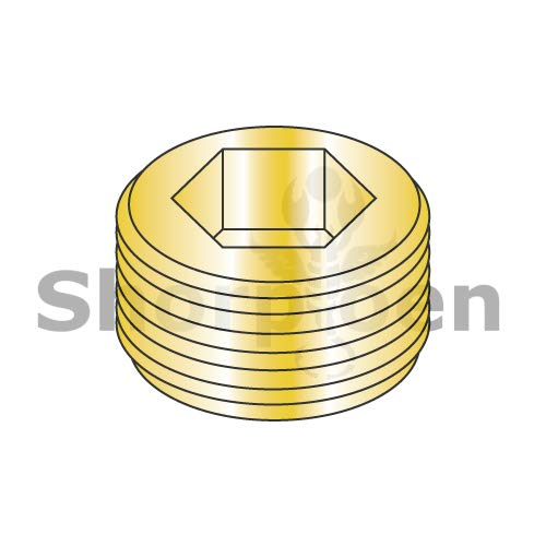(SHORPIOEN Dry Seal Socket Pipe Plug Brass 1/4 BC-00250PPSB (Box of 100))