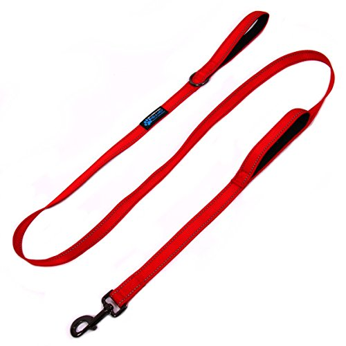 Max and Neo Double Handle Traffic Dog Leash Reflective - We Donate a Leash to a Dog Rescue for Every Leash Sold (RED) (Down Runners Double)